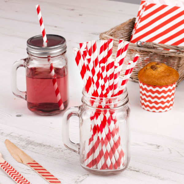 Carnival Red Paper Straws (25)